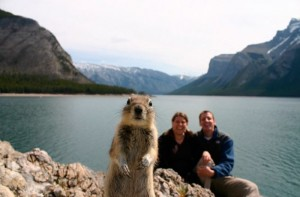 squirrel-photo-bomb
