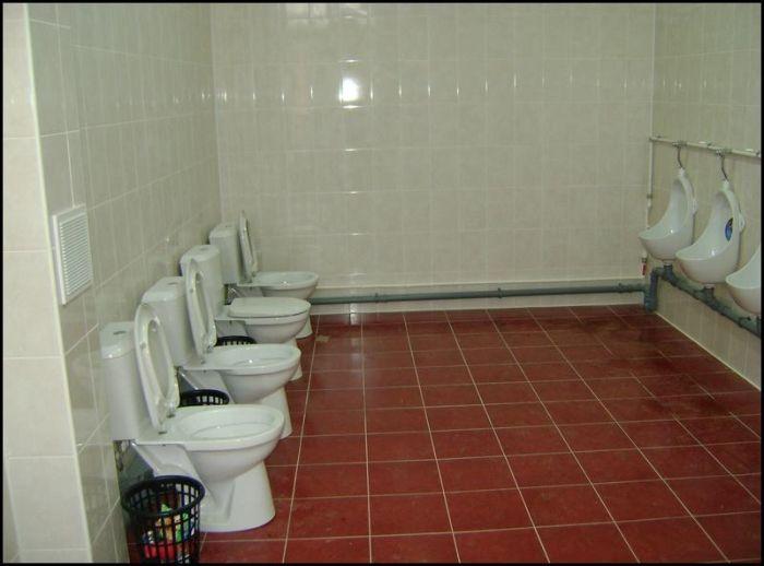 No Privacy Bathroom 1funny Com