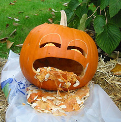 pumpkin puke3