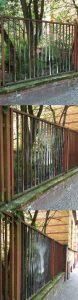 Creepy Fence Illusion