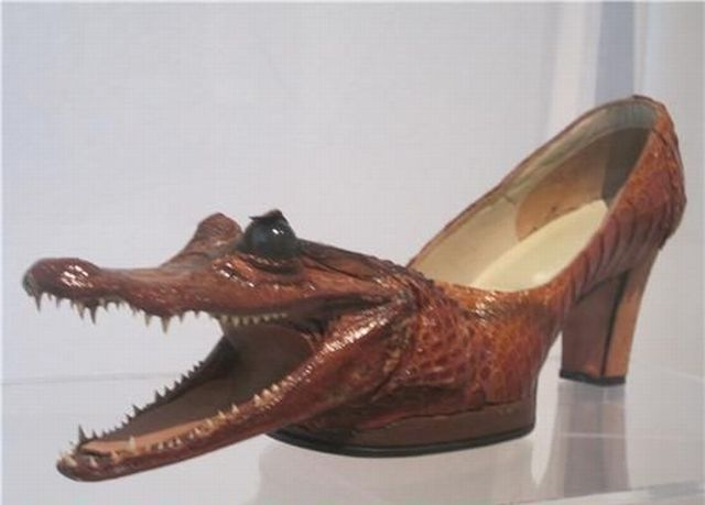 Baby Alligator Shoes