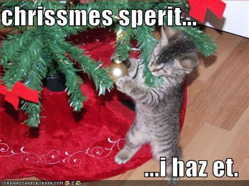 Cute Christmas Kittens (26 pics) – 1Funny.com