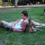 Chilling with a Kangaroo