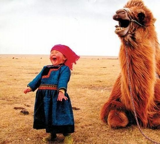 Laughing Together – 1Funny.com