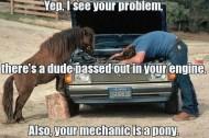 Mechanic Pony