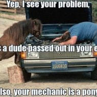 Mechanic Pony