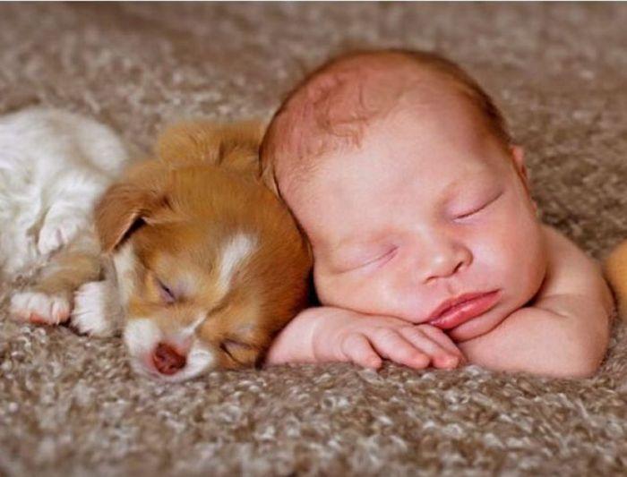 Baby Pups Stinkt Stillkind