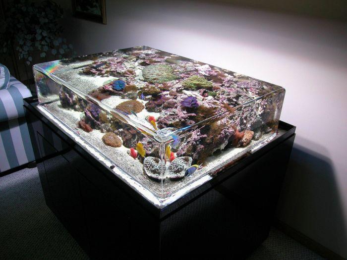 aquarium table. Black Bedroom Furniture Sets. Home Design Ideas