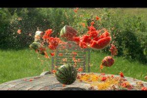 Rubber Bands vs. Watermelon