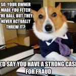 Dog Lawyer