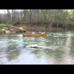 Dog Save Friends in Canoe