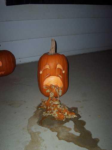 Puking Pumpkins 2 25 Pics 1funny Com