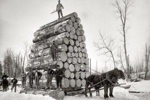 hauling-wood