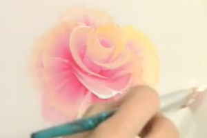How to Paint the Cabbage Rose   1Funny.com