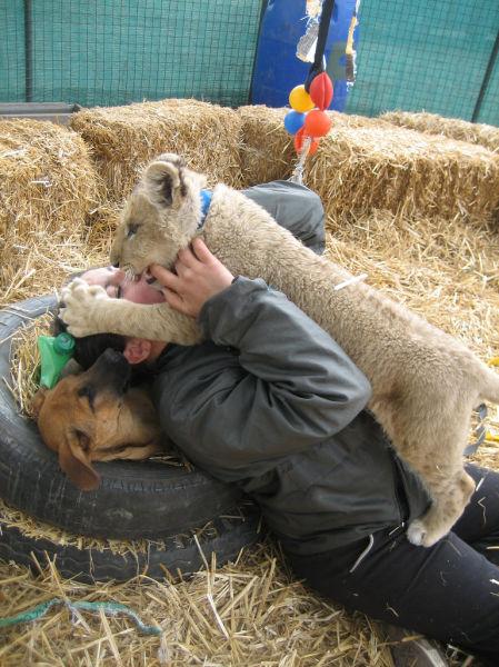 A Scary Petting Zoo 38 Pics 1funny Com