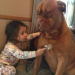 Kids and Dogs (27 pics)