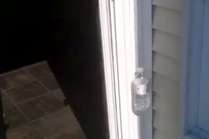 Automatic Screen Door Thumbnail