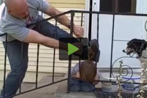 kid-stuck-fence