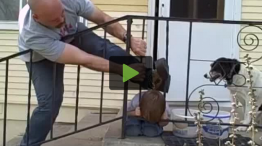 Kid Gets Head Stuck in Fence