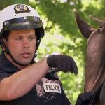Cop Goes Horse Riding Backwards!