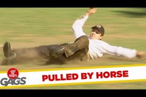 Horse-Ride-Gone-Wrong-Just-For-Laughs-Gags