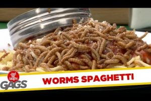 Live-Worms-Served-at-Restaurant-Just-For-Laughs-Gags