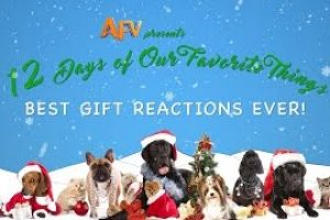 AFVs-12-Days-Of-Christmas-Best-Gift-Reactions-Compilation