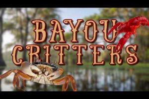 Bayou-Critters