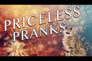 Priceless-Pranks