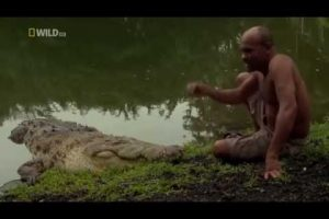The-Man-Who-Swims-With-Crocodiles