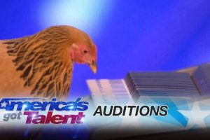 Jokgu-of-the-Flockstars-Chicken-Plays-Patriotic-Tune-on-Keyboard-Americas-Got-Talent-2017