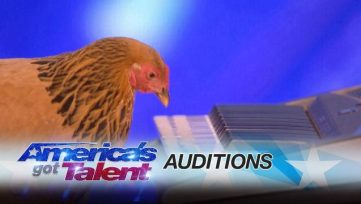 Jokgu-of-the-Flockstars-Chicken-Plays-Patriotic-Tune-on-Keyboard-Americas-Got-Talent-2017