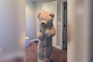 Larger-Than-Life-Bear-Has-Amazing-Dance-Moves