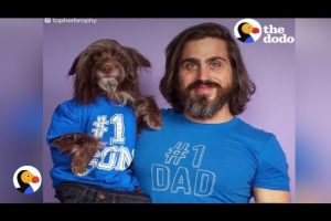 Dog-Dads-Would-Do-Anything-For-Their-Pups-Fathers-Day-The-Dodo