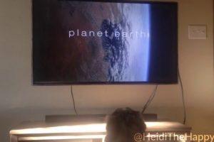 Heidi-The-Dog-Watching-Planet-Earth