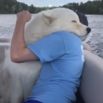 Hugging a Man's Best Friend