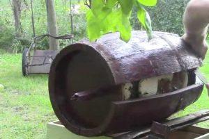 Bee-swarm-in-an-oak-barrel