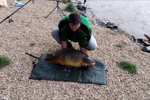 Carp-Escapes-From-Fisherman