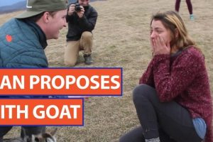 Guy-Proposes-to-Girlfriend-With-a-Baby-Goat-Video-2017-Daily-Heart-Beat