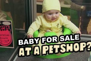 Petshop-Pranks-Best-Of-Just-For-Laughs-Gags
