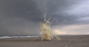 STRANDBEEST-EVOLUTION-2017