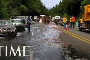Truck-Full-Of-Eels-Overturns-And-Covers-Highway-In-Slime-In-Oregon-Leading-To-A-5-Car-Pileup-TIME