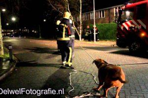 25-11-2012-Hond-schiet-brandweer-Harderwijk-te-hulp-bij-stormschade