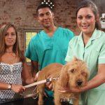 DOCS: Animal Madhouse Ep.1