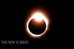 How-We-Will-React-to-the-2017-Total-Solar-Eclipse-The-New-Yorker