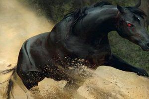 5-Horses-You-Wont-Believe-Actually-Exist