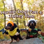 Crusoe & Oakley the Huntin' Dogs: Turkey Time