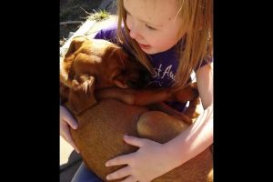 Little-girl-sings-to-puppy