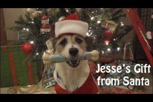 Jesses-Christmas-Webisode-Santas-Gift