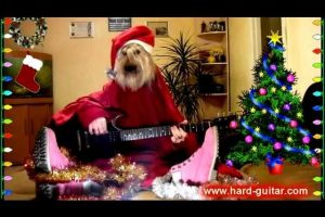 New-Year-Funny-We-Wish-You-a-Merry-Christmas-Dog-playing-guitar-Funny-Greeting-Card